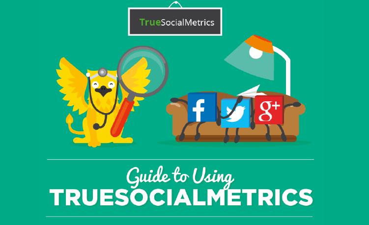 true social media metrics dashboard