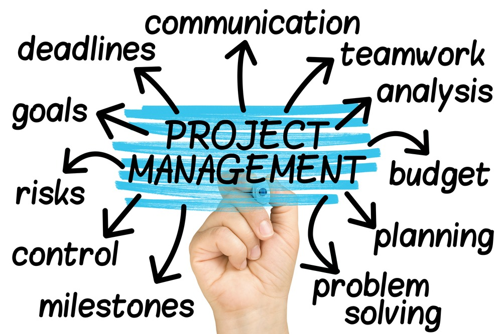 Asana Project Management offers some good options, but are they really enough
